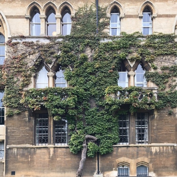 christchurch college oxford plants on buildings