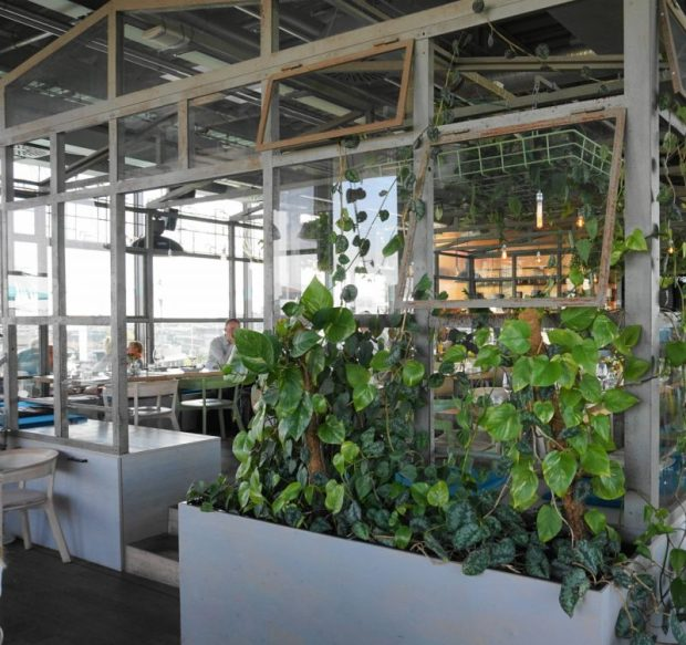 bohemian greenhouse restaurant in berlin modern interiors