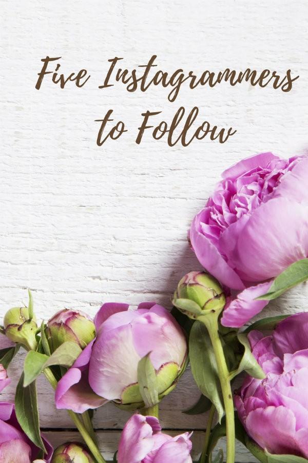 instagram 2017 to follow instagrammers