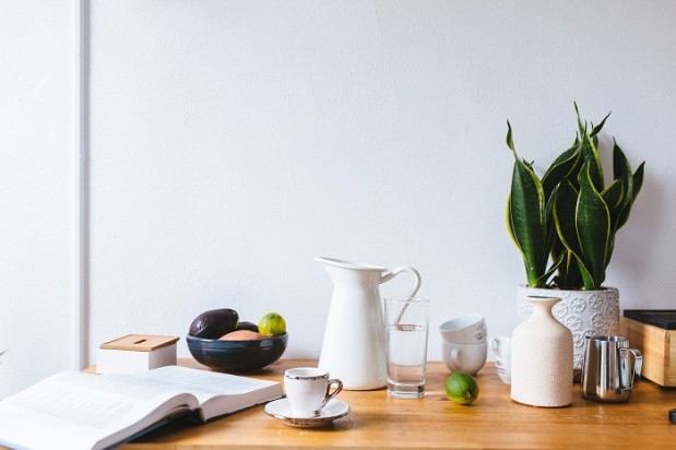 coffee and plants in your home