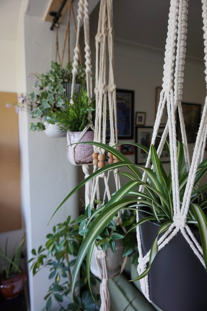 macrame hanging planters in living room