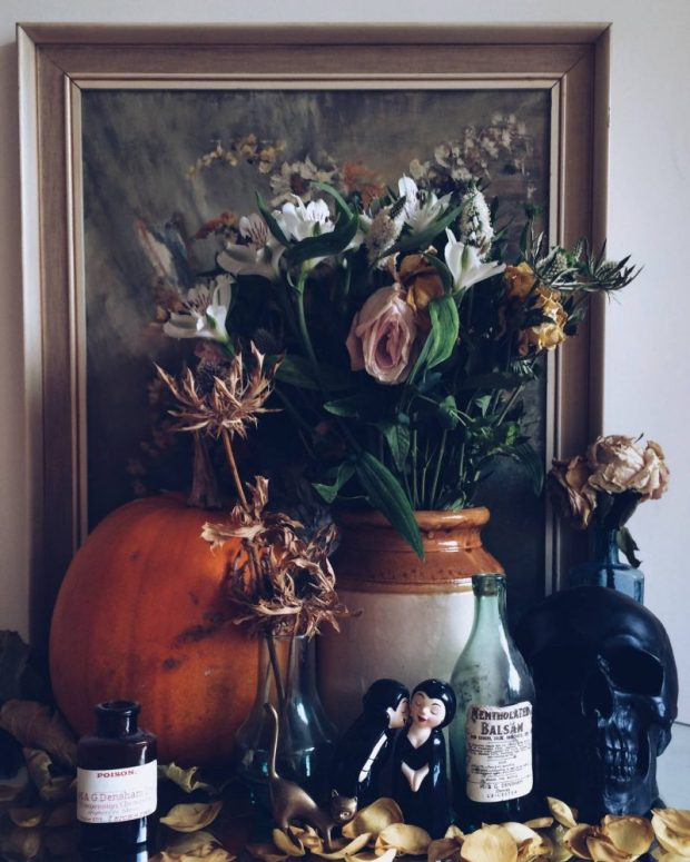 flowers halloween pumpkin skull cat addams family