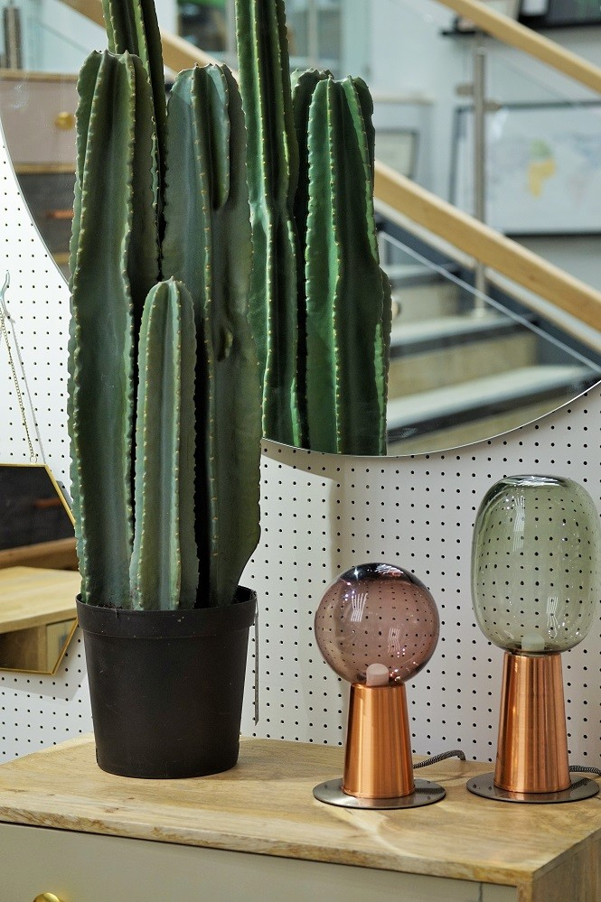 lights and faux cacti with pegboard