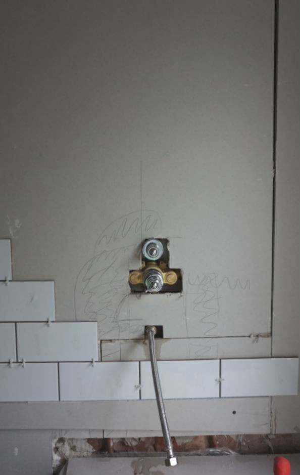 shower in wall of bathroom update renovation