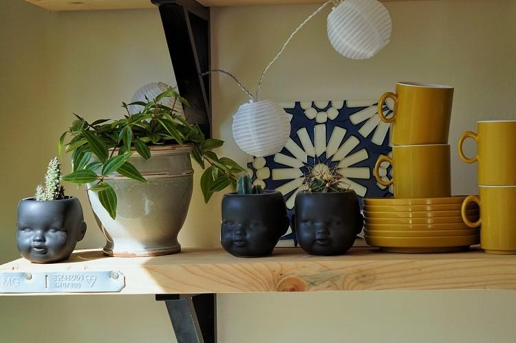 plant babies cactic dolls head planters kitchen shelf
