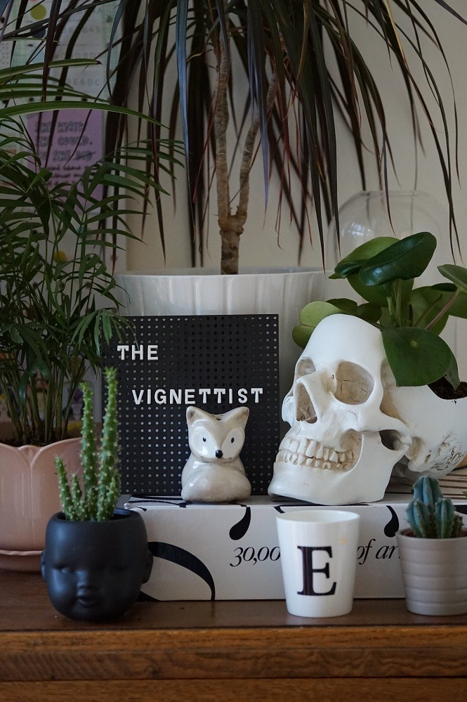 different ways of displaying houseplants