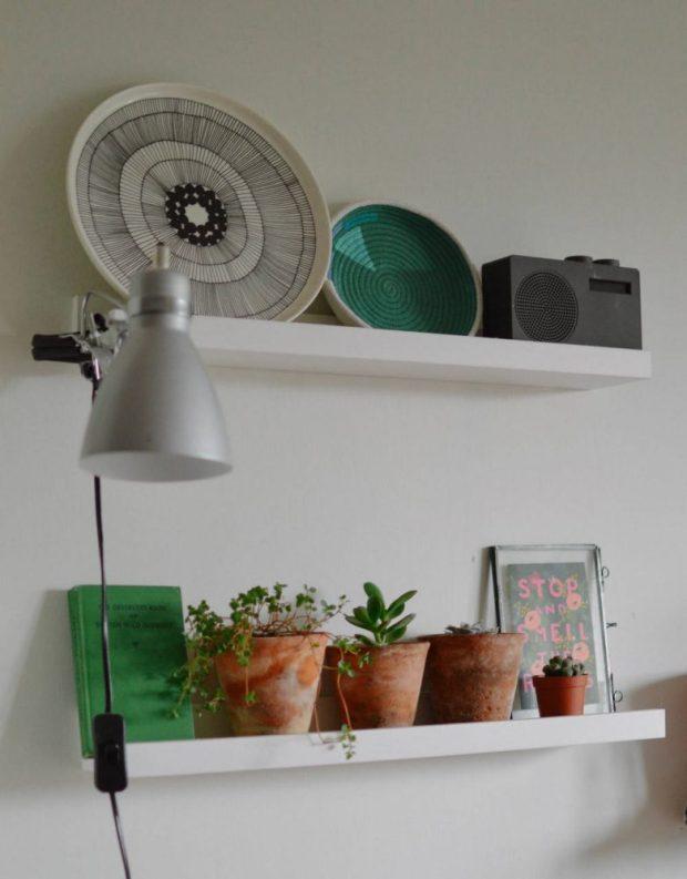 jen little birdie plant shelves