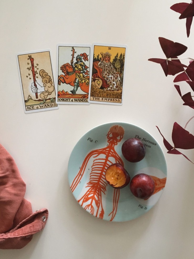 tarot for writers nervous system thrive and growth